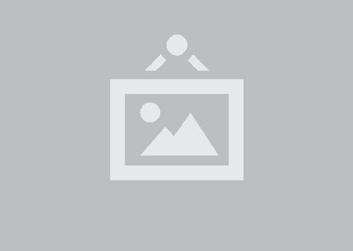 Développeur web et web mobile 490H